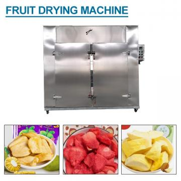 Continuous Refreshing Fruit Drying Machine With Multi Function