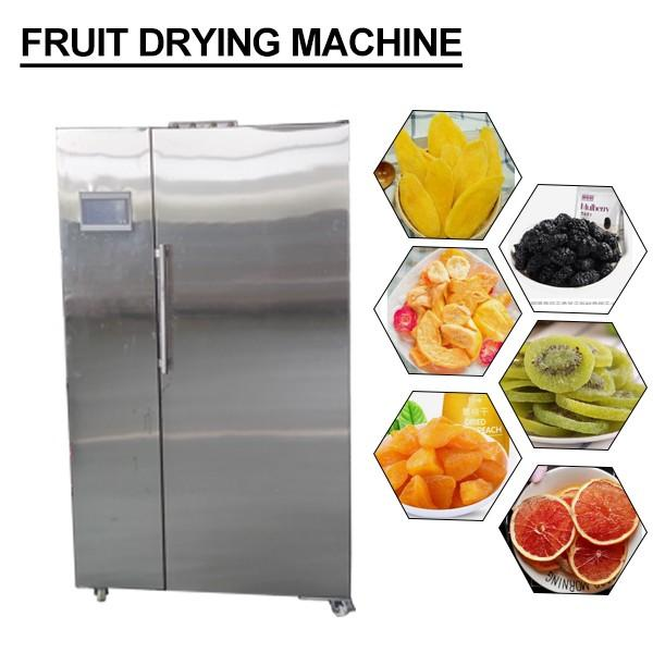 ISO Certification Touch Screen Control Fruit Drying Machine With Continuous Drying #1 image