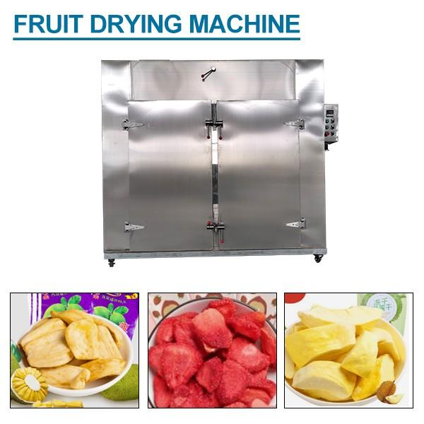 Continuous Refreshing Fruit Drying Machine With Multi Function #1 image