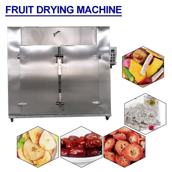 450V Environmental Protection Food Industry Fruit Drying Machine,ISO Certification #1 image
